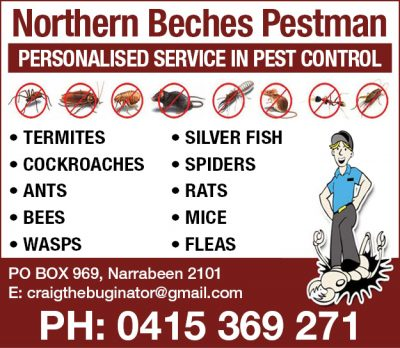 Northern Beaches Pest Man